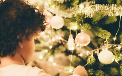 Kerstbomen en versieringen