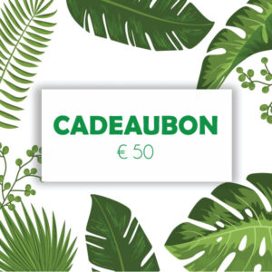 Cadeaubon € 50 (giftcard)