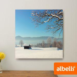 Foto op Plexiglas - Plexiglas Vierkant 50x50 cm.