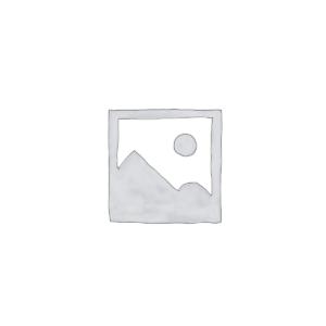 Caladium Candidum - P 15 cm