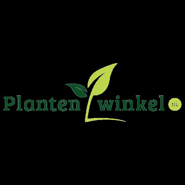 Plantenwinkel