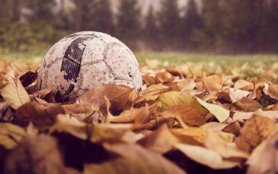 Voetbal- en basketbal toernooi Palmengrift Veenendaal